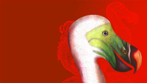 ESTINZIONI biodiversità dei vertebrati in allarme rosso
