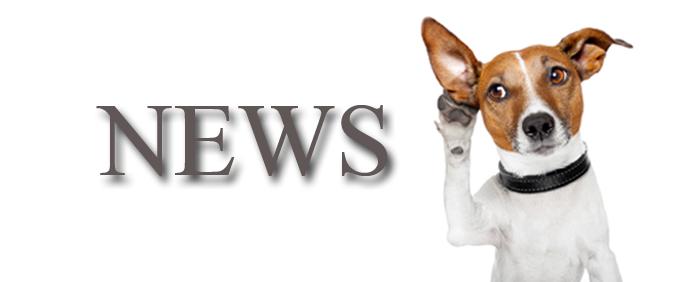 news_slider